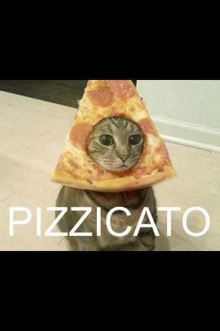 pizzacato.jpg
