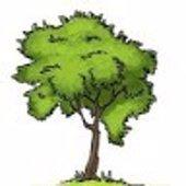 Tree's Studio