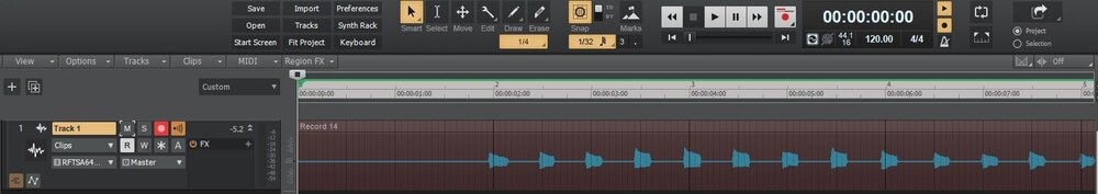 Recording on beat.jpg