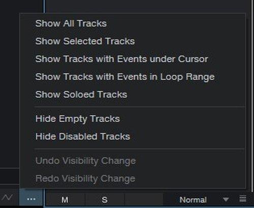 2021-01-19_tracks.jpg