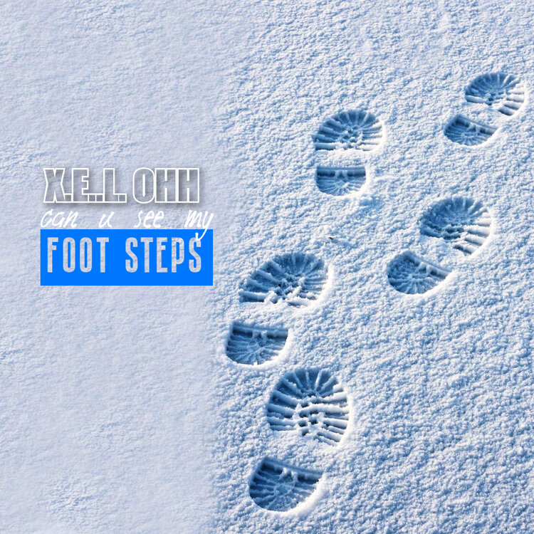 foot steps cover 2.jpg